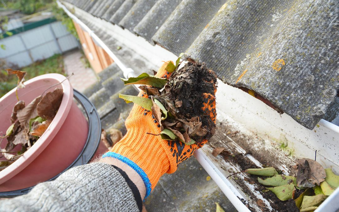 3 Reasons You Should Clean Gutters During the Fall